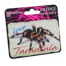 Magnet Tarantula